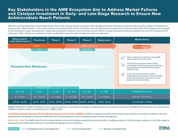 A graphic published by PhRMA detailing the phases of AMR medicines from Hit-to-Lead and lead Optimization through Market Entry